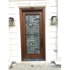 1 panel door with glass